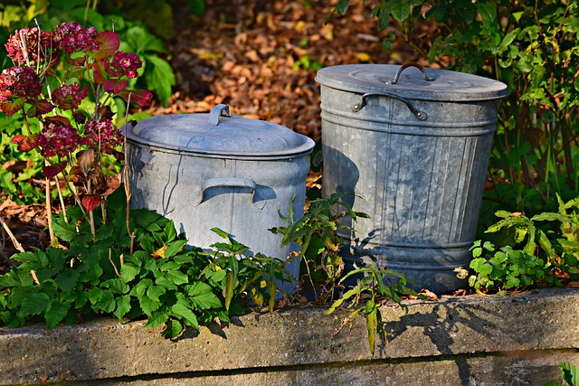 How to Choose The Right Trash Can For Your Backyard